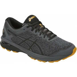Asics GT-1000 6 GTX - Herren Running Schuhe