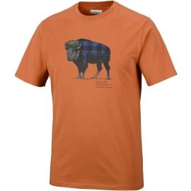 Columbia CSC CHECK THE BUFFALO II SHORT SLEEVE - Herren T- Shirt